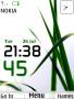 Grass Clock themes