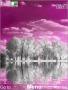 Purple Lake themes