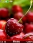 Hot Cherry Clock Free Mobile Themes