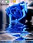 Blue Rose themes