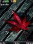 Leaf themes