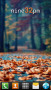 Fallen Leaves Autumn For Android Theme themes