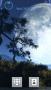 Space Night Tree S60v5 Theme themes