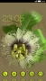 Green Curly Flower Free Android Theme themes