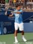 Roger Federer themes