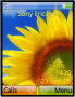 Sun Flower Free Mobile Themes
