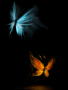 Butter Fly Effect  wallpapers