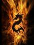 Dragon - Mkp wallpapers