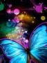Butterflyc wallpapers