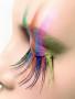 Colors Eye wallpapers