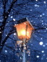 Street Light wallpapers