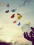 Fly Away In Sky wallpapers
