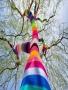 Rainbow Tree wallpapers