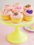 Vanilla Cupcakes wallpapers