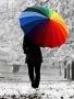 Colored Umbrella wallpapers