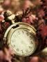 Clock wallpapers