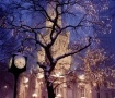 Chicago Water Tower wallpapers