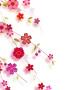 Cute Flowers wallpapers