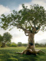 Peoples On Tree wallpapers