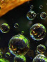 Amazing Bubbles wallpapers