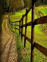 Country Road wallpapers