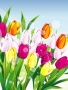 3D Abstract Tulips wallpapers