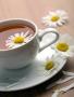 Chrysanthemum Tea wallpapers