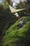 Flying Little Man IPhone Wallpaper wallpapers
