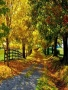 Beautiful Autumn wallpapers