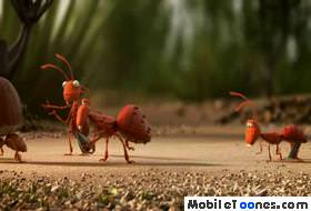 Funny Ants Team Mobile Video