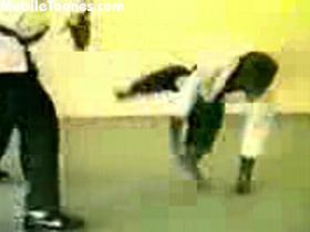 Karate_Monkey.3gp Mobile Video