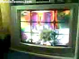 Soni Kuri Mobile Video