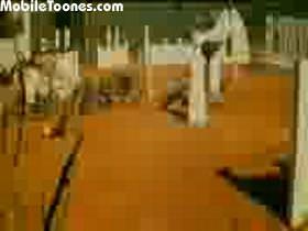 Anita-Mehbooba Mobile Video